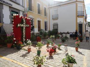 cruz 29